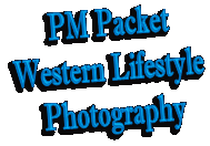 PM Packet