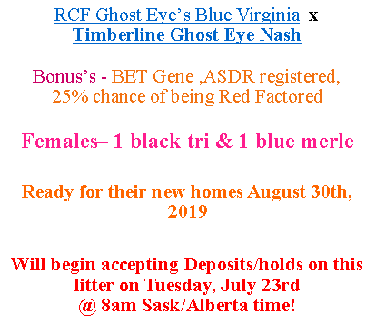 Text Box: RCF Ghost Eye's Blue Virginia  x