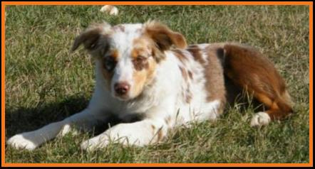 Ghost Eye Molly MaGee-Oct 2013-6 months
